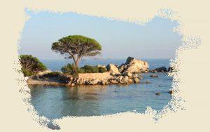 photo-mer4